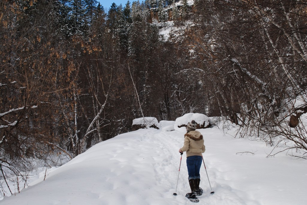 Snowshoeing Iron Creek Spearfish Canyon