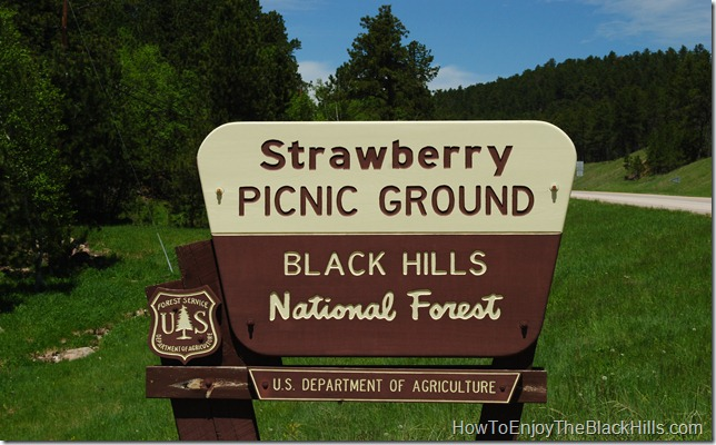 photo Strawberry Picinic Area Black Hills National Forest