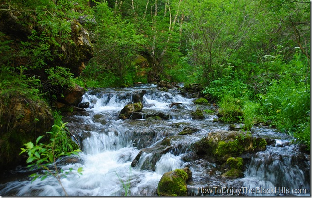 photo Iron Creek Spearfish Canyon South Dakota